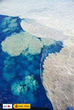 Erupción submarina Canarias 19