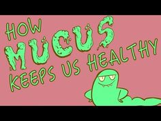 YouAccel Shared a Video: How mucus keeps us healthy - Katharina Ribbeck Cool Science Experiments, Science Lessons, Science For Kids, Science News, Life Science, Science Classroom, Science Education, Teaching Science, Teaching Ideas