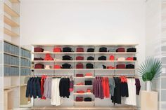 Everlane's Storefront, Dyson's NYC Space, Kith for Kids