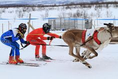 The Sami Easter Festival blends old and new traditions in Lappland's northern reaches