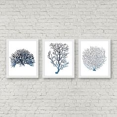 Set Of 3 Sea Coral Art Set - Fan Coral /Seaweed Printable Wall Art - Watercolor…