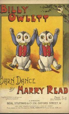 Dancing owls.