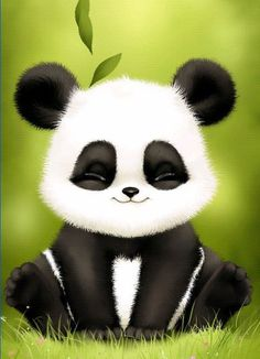 106 Meilleures Images Du Tableau Panda Humour Citations