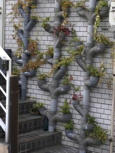 20 + Cool Vertical Garden Ideas