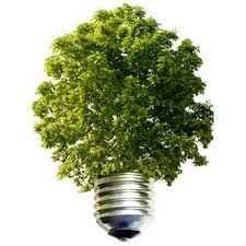 relación entre los factores económico, político y ambiental en pro de un desarrollo viable para el planeta y el uso de su materia prima pensando en las futuras generaciones