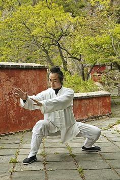 Taoist monk Zhang Qingren - Tai Chi, Hou Shi Wu Temple, China