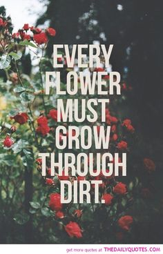 every-flower-grow-through-dirt-motivational-inspirational-quotes-sayings-pictures.jpg (500×780)
