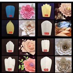 MEMORIAL DAY WEEKEND SALE STARTS NOW  ALL FLOWER TEMPLATES BUY 1 GET THE 2ND TEMPLATE 50% OFF AND GET A FREE KING ROSE CENTER TEMPLATE  TO ORDER PLEASE EMAIL ME AT BACKDROPTEMPLATE@GMAIL.COM #happymemorialday #memorialdayweekend #sale #paperflowers #paperflowertemplates