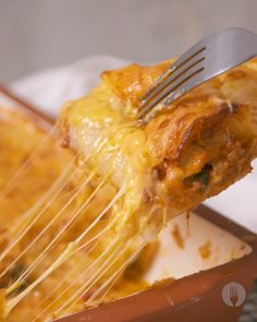Turn your lasagne game up a notch with this awesome weeknight dinner idea Canned Fish Recipes, Mexican Food Recipes, Lasagne Roll Ups, Easy Cooking, Cooking Recipes, South African Recipes, Fish Dishes, Winter Food, Light Recipes