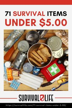 Survival items come in different forms and monetary value, and this list comes dirt-cheap! At only $5, you can complete an emergency survival kit. #survivalkit #survivalitems #survivaltips #survival #preparedness #survivallife Emergency Survival Kit, Survival Items, Survival Life, Survival Tools, Outdoor Shelters, Dirt Cheap, Safety Tips, Food Storage, Prepping