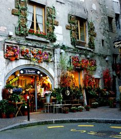 Flower shop, Annecy, France