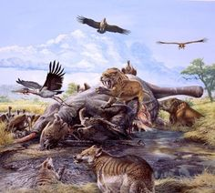 """The Portolá expedition, a group of Spanish explorers led by Gaspar de Portolá, made the first written record of the tar pits in 1769. Father Juan Crespí wrote, """"While crossing the basin the scouts reported having seen some geysers of tar issuing from the ground like springs; it boils up molten, and the water runs to one side and the tar to the other. We christened them Los Volcanes de Brea [the Tar Volcanoes]."""