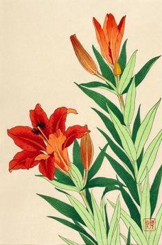 Shodo Kawarazaki (1889-1973). Stargazer Lily.