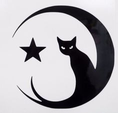Cat Eyes Moon Star Sexy Funny Car Window Vinyl Decal Sticker Choose 12 Colors! #TheStickerEmporium