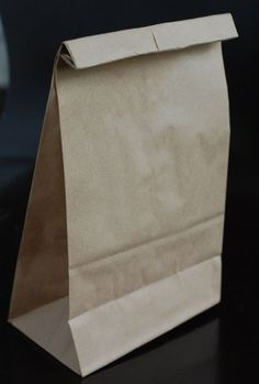 Air popped pop corn in the microwave using a brown paper bag.