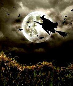 Witche Out For A Spin https://fbcdn-sphotos-a-a.akamaihd.net/hphotos-ak-ash3/68728_499372436749247_328272575_n.jpg