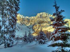 Winter Mountain, Winter Wallpaper, Alps, Mount Rainier, Mount Everest, Mountains, Snow Trees, Nature, Travel