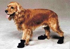 Arctic Fleece Boots ** Click image for more details.