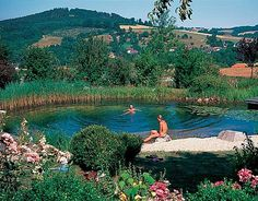 How to Make a Swimming Pond