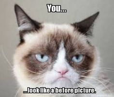 #GrumpyCat #meme Grumpy Cat™ stuff, gifts, coupons, meme on www.pinterest.com/erikakaisersot