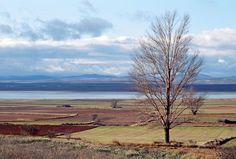 Laguna de Gallocanta Entre las provincias de Zaragoza y Teruel