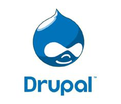 Rapidsoft Technologies is #Drupal web development company based on US and have a offshore development center in India. Company have dedicated drupal Website developers  who have expertise in web development based on Drupal.  Connect with us: http://bit.ly/1fCUUW4