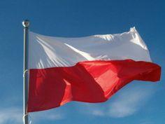 Gdzie kupić flagę?