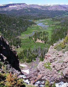 Medicine Bow-Routt National Forests & Thunder Basin National Grassland - Districts