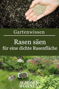 Die 78 besten Bilder von Gartengestaltung: schöne Ideen in ...