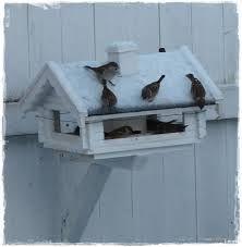 vogel voeren - Google zoeken Cottage In The Woods, Little Birds, Yellow And Brown, Winter White, Old And New, Winter Wonderland, Cosy, Outdoor Decor, Furniture
