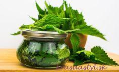 Recepty zo žihľavy: Vyrob si žihľavový sirup, med, tinktúru, ocot či tonikum Med, Pickles, Cucumber, Syrup, Pickle, Zucchini, Pickling