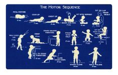 Motor sequence