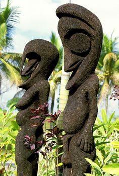 Image result for carved tree fern trunk Tree Fern, Tree Carving, Tropical Garden, Ferns, New Zealand, Trunks, Country, Image, Drift Wood