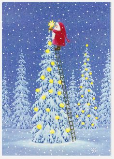 """Eva Melhuish……..SANTA IS TAKING DOWN THE 2015 STAR…..IT IS BECOMING A BIT WORN……..MRS. CLAUSE WILL PUT IT WITH ALL THE PREVIOUS STARS IN THE """"SAVE"""" BOX…….A NEW BRIGHT & SHINING ONE IS THE 2016 REPLACEMENT………..ccp"""