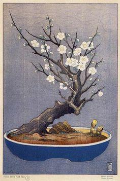 Japanese Dwarf Plum Tree B  by Lilian Miller, 1928