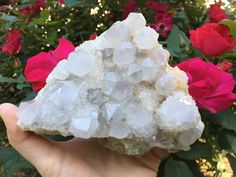 Your place to buy and sell all things handmade Quartz Cluster, Crystal Cluster, Large Crystals, Natural Crystals, Amethyst Quartz, Quartz Crystal, Spirit Quartz, White Spirit, Cactus Flower
