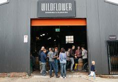 Best Brewery Bars in Sydney - Broadsheet Cool Bars, Fun Drinks, Brewery, Wild Flowers, Sydney, Bucket, Australia, Eat, Wildflowers