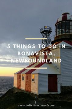 5 Things to do in Bonavista, Newfoundland — Dotted Line Travels