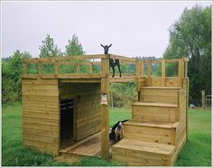 Snowshoe Acres Loves This Simple Goat Shelter With Resting Bench