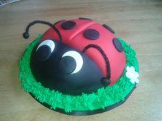 Ladybird Birthday Cake.