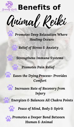 What is Reiki? Benefits of Animal Reiki - the list is endless and it can help you and your animal(s). Deep relaxation, release stress and more. Go for it and click the pic to learn more. Self Treatment, Reiki Benefits, What Is Reiki, Animal Reiki, Reiki Courses, Reiki Therapy, Learn Reiki, Reiki Symbols, Pets