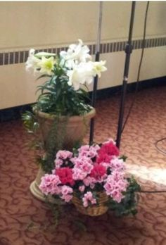 2014 flowers by lector stand