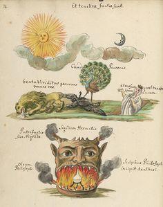 Ammirate lo strano e mirabolante mondo dell'alchimia.