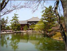 Tōdai ji, Nara #Japón