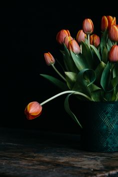 tulips :  aiala hernando