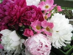 freshly picked peonies and roses from my cottage garden by Golly Bard