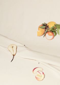 Adam Kremer, Fruit Study on Canvas (IV), 2013