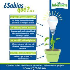 ¿Sabías qué, además de brindar un menor consumo de energía, los focos LED tienen…