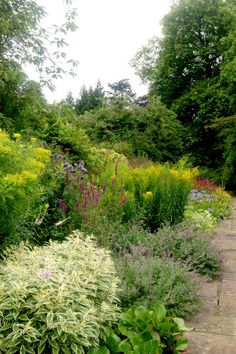 Mixed Border (Bath)