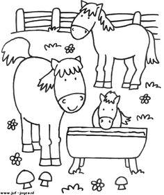 Boerderij - paarden  Juf Joyce